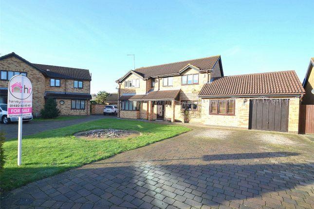 Thumbnail Detached house for sale in Seathwaite, Stukeley Meadows, Huntingdon, Cambridgeshire