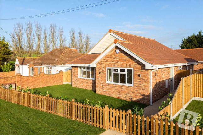 Thumbnail Bungalow for sale in Main Road, Woodham Ferrers, Chelmsford, Essex