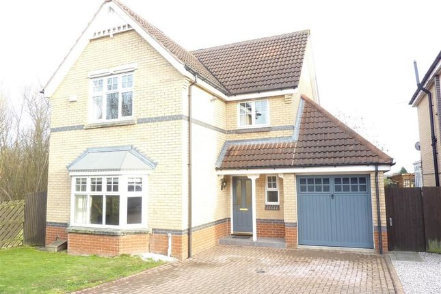 Thumbnail Detached house to rent in Cornflower Way, Harrogate, North Yorkshire