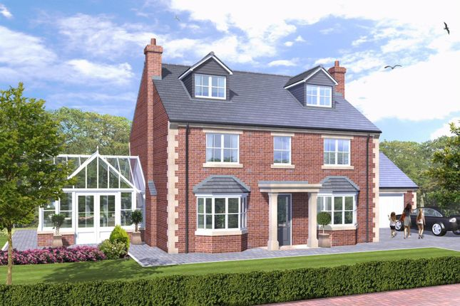 Thumbnail Detached house for sale in West Park, Woodgates Lane, North Ferriby, East Yorkshire