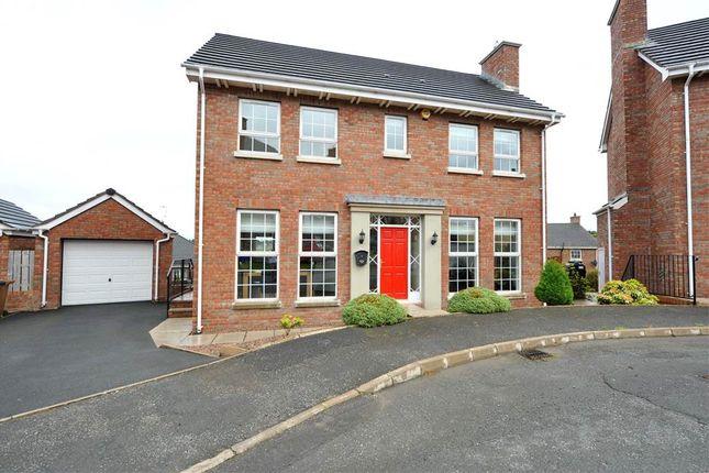 Thumbnail Detached house for sale in 5, Demesne Park, Downpatrick