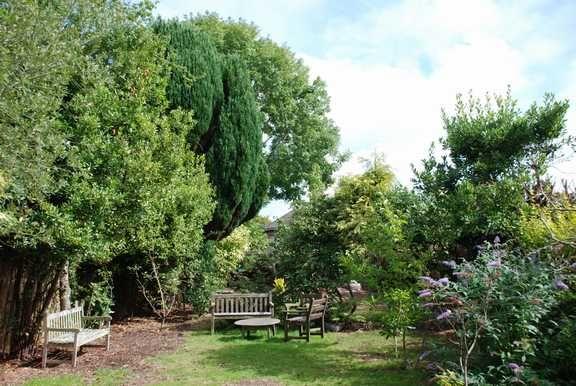 Garden of Cheese Lane, Sidmouth EX10