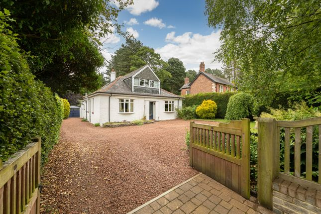 Thumbnail Bungalow for sale in 9 Apperley Road, Stocksfield, Northumberland