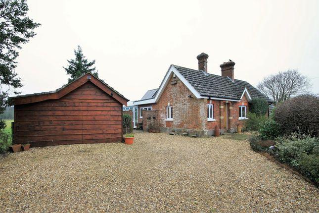 Thumbnail Detached bungalow for sale in Kent Lane, Harbridge, Ringwood