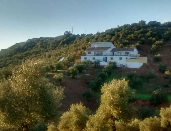 Thumbnail Property for sale in Montoro, Andalucia, Spain