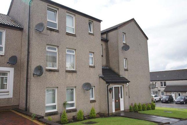 Studio to rent in Spynie Place, Bishopbriggs, Glasgow G64