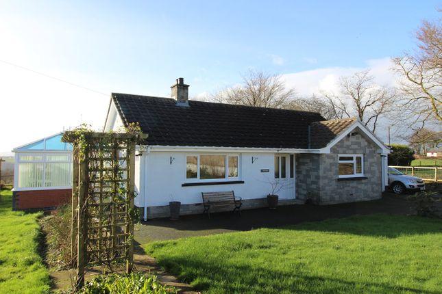 Thumbnail Detached bungalow for sale in Maesymeillion, Llandysul