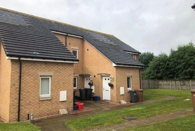 Thumbnail Property to rent in Maude Close, Kirkliston
