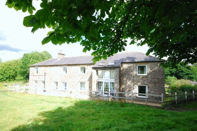 Thumbnail Property for sale in Low Byer Park, Alston