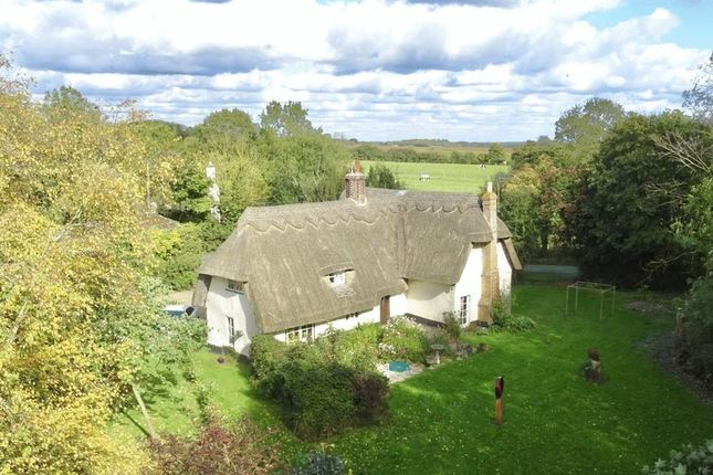 Thumbnail Property for sale in Offord Road, Graveley, St. Neots