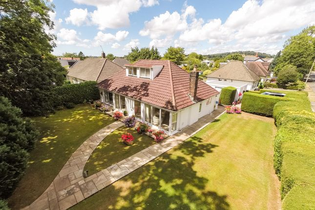 Thumbnail Detached bungalow for sale in Beulah Road, Rhiwbina, Cardiff