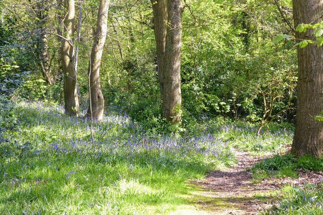 Photo 1 of Chantry Road, Stourton, Stourbridge DY7