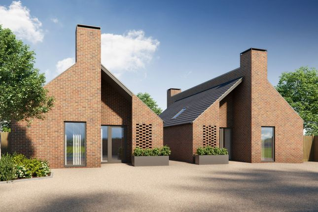 Thumbnail Detached bungalow for sale in Cressing Road, Braintree
