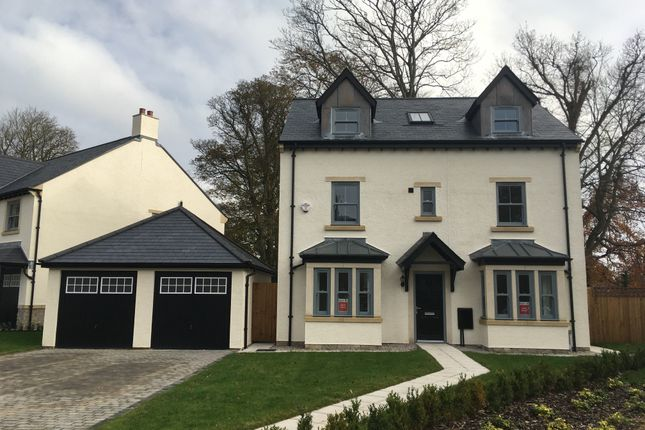 """5 bed property for sale in """"The Myles"""" at Ulverston LA12"""