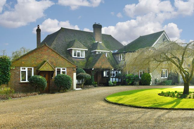 Thumbnail Equestrian property for sale in Shepherds Walk, Headley, Epsom