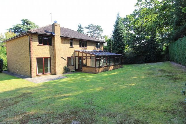 Thumbnail Detached house for sale in Milner Drive, Cobham, Surrey