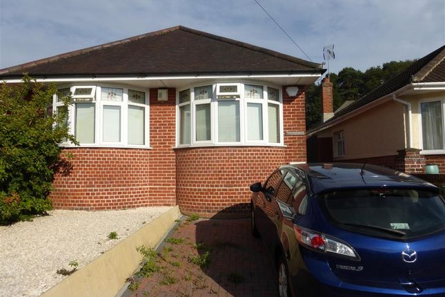 Thumbnail Bungalow to rent in Springford Crescent, Southampton