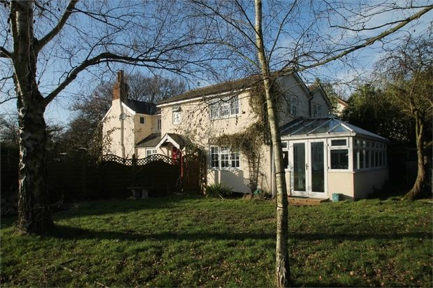 Thumbnail Detached house for sale in Holly Lane, Great Horkesley, Colchester, Essex