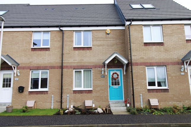 Thumbnail Terraced house for sale in Hallhill Crescent, Johnstone, Renfrewshire