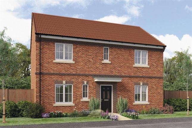 "Thumbnail Detached house for sale in ""Stevenson B"" at Croston Road, Farington Moss, Leyland"