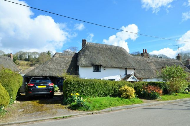 Thumbnail Detached house for sale in The Triangle, Winterborne Stickland, Blandford Forum