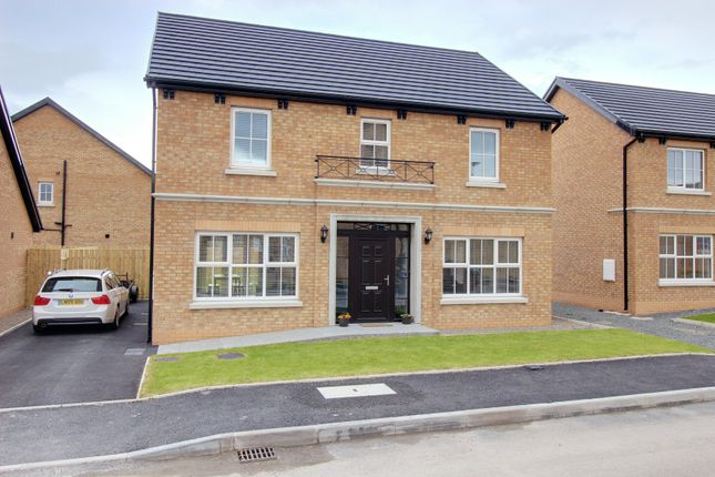 Thumbnail Detached house for sale in Towerview Meadow, Cloughey