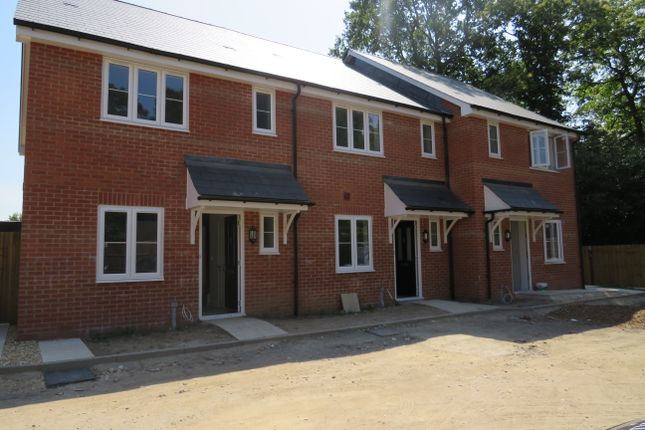 Thumbnail Terraced house to rent in Thornhill Park Road, Southampton
