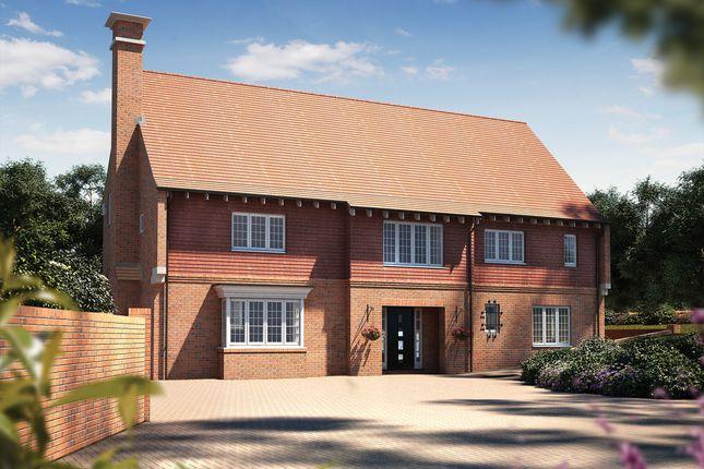 Thumbnail Detached house for sale in Pine Ridge, Lyme Regis