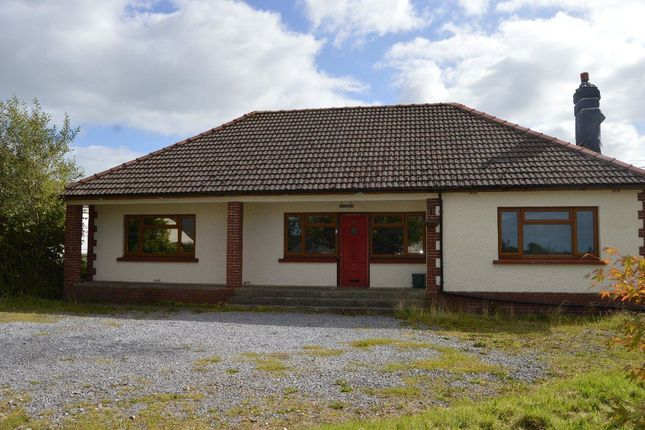Thumbnail Bungalow to rent in Spring Gardens, Whitland