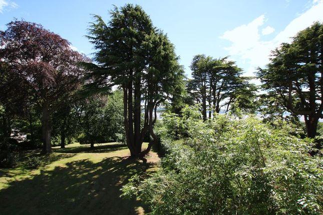 Garden of Hazel Drive, Dundee DD2