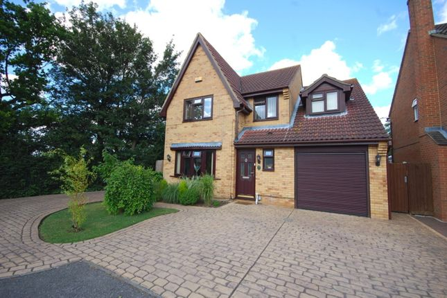 Thumbnail Detached house for sale in Blacksmith Close, Springfield, Chelmsford