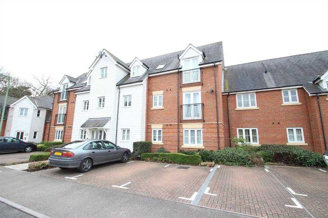 Thumbnail Flat to rent in Segger View, Kesgrave, Ipswich