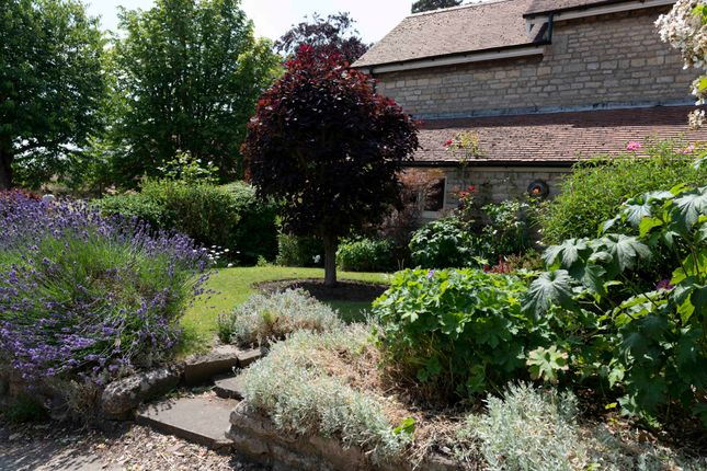 Garden And House of Main Street, Empingham, Oakham LE15