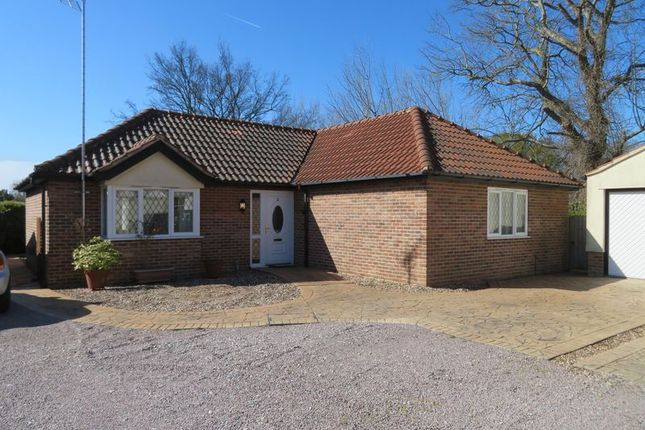 Thumbnail Detached bungalow for sale in Kingsland Heights, Kingsland Road, West Mersea, Colchester