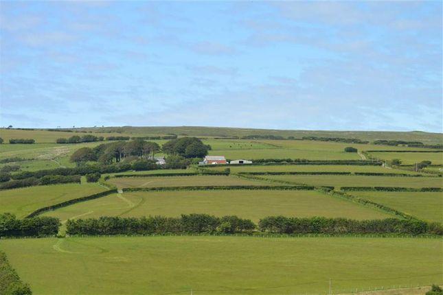 Thumbnail Farm for sale in Challacombe, Barnstaple