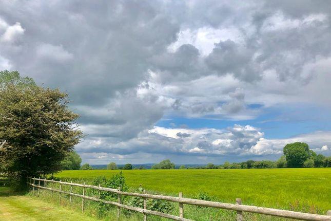 Views of Woodcote, Oxfordshire RG8