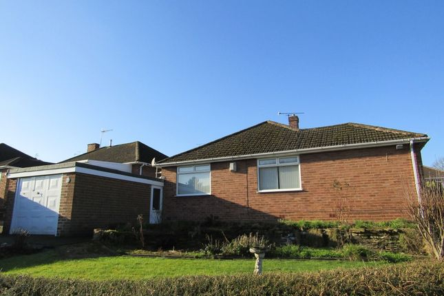 Thumbnail Detached bungalow to rent in Windsor Drive, Wingerworth