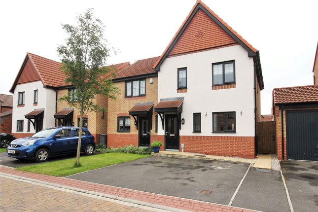 Thumbnail Detached house for sale in College Gardens, Hull