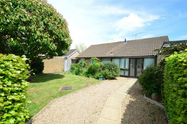 Thumbnail Detached bungalow for sale in Briars Lane, Hatfield, Hertfordshire