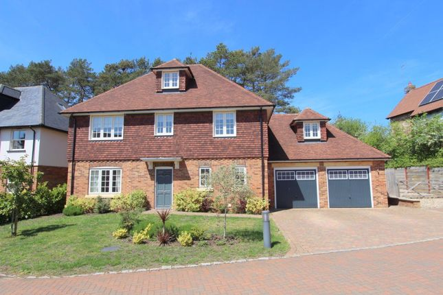 Thumbnail Property to rent in Woburn Road, Heath And Reach, Leighton Buzzard