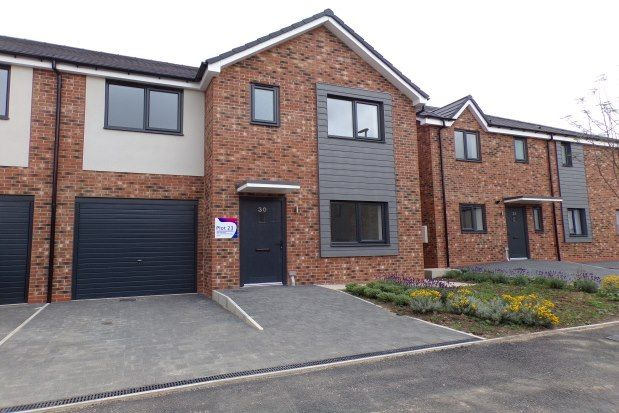 Thumbnail Property to rent in Elm Gardens, Middleton St George