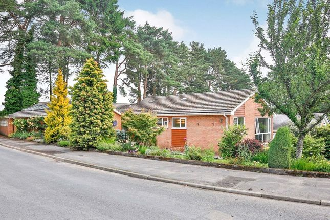 Thumbnail Bungalow for sale in The Paddock, Lanchester, Durham