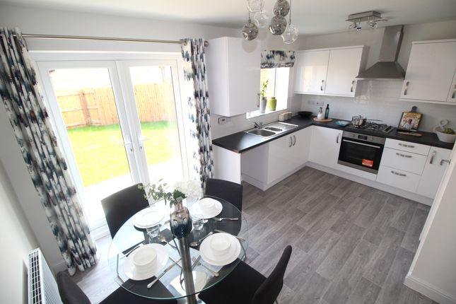 Thumbnail Semi-detached house for sale in Sycamore Grove, Burnley, Lancashire