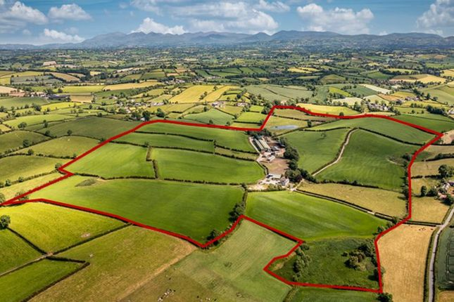 Property for sale in Tullymore Road, Poyntzpass, Newry BT35