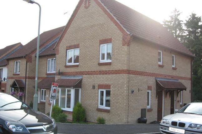 Thumbnail Property to rent in Wordsworth Close, Exmouth