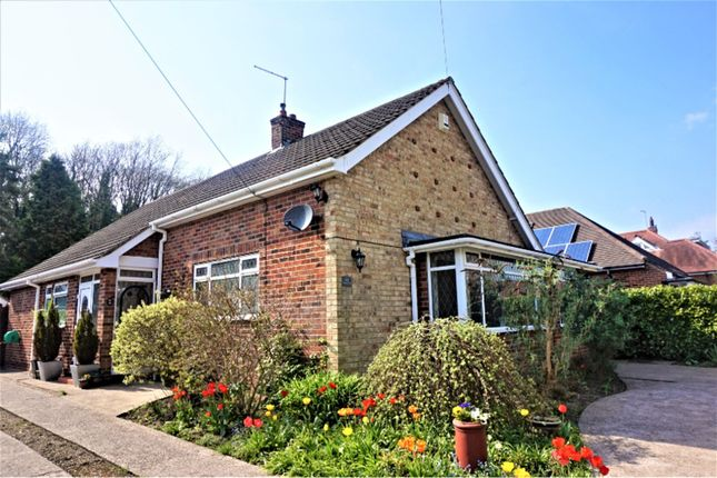 Thumbnail Detached bungalow for sale in Valley Drive, Kirkella