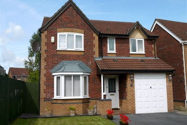 Thumbnail Detached house to rent in Tal Y Coed, Hendy, Pontarddulais, Swansea