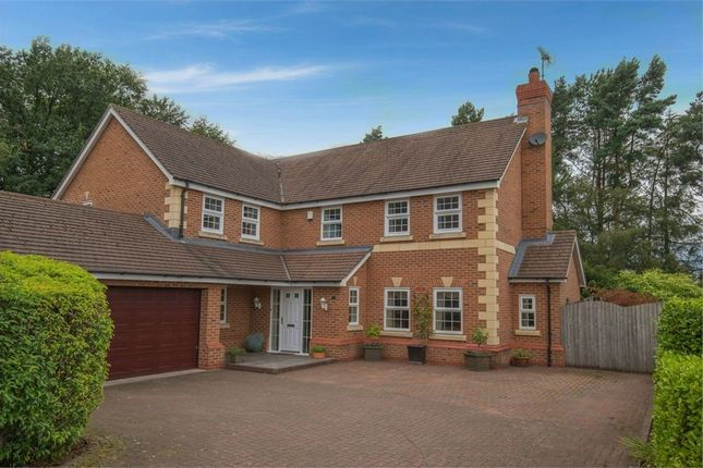 Detached house for sale in Jenner Grove, Blythe Bridge, Stoke-On-Trent, Staffordshire