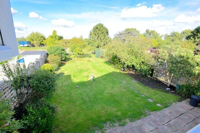 Thumbnail Detached house to rent in Green Lane, Eastwood, Leigh-On-Sea
