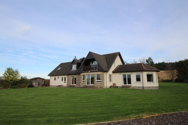 Thumbnail Detached house to rent in Fortrose
